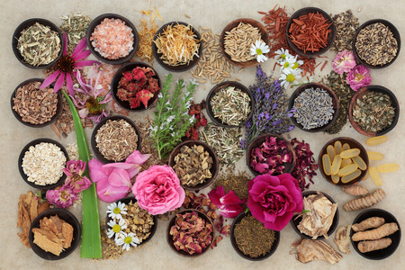 holistic view: Herb and flower  selection used in herbal medicine to heal skin disorders such as psoriasis and eczema on hemp paper background.