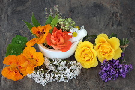 Natural herbal alternative medicine selection with valerian, angelica, nasturtium, lavender, thyme,  and rose flowers.