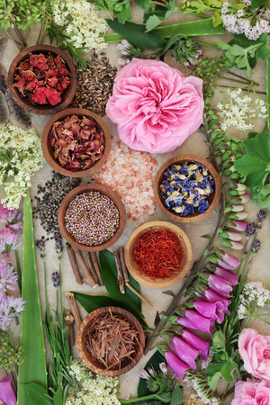 Alternative medicine selection used in natural healing with dried and fresh flowers and herbs on hemp paper background.