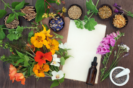 homoeopathic: Naturopathic flower and herb selection used in herbal medicine with hemp paper notebook, mortar and pestle and essential oil bottle oil on oak.