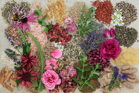 Herbal medicine selection with flowers and herbs to heal skin disorders such as psoriasis and eczema on hemp paper background. Stock Photo