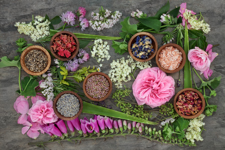 Healing herb and flower selection used in natural alternative herbal medicine. Stock Photo