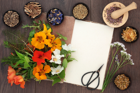 Flower and herb selection used in natural alternative herbal medicine with hemp paper notebook and scissors on oak background.