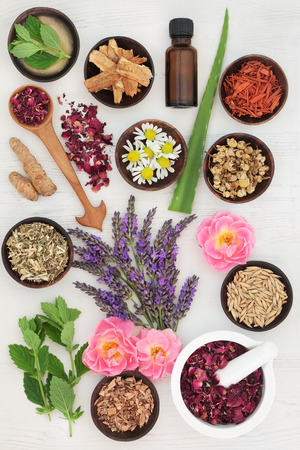 Herbs and ingredients to heal skin disorders including psoriasis and eczema on white distressed wood background. Stock Photo