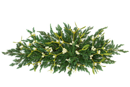 Mistletoe and juniper fir forming a decorative winter greenery display over white background.