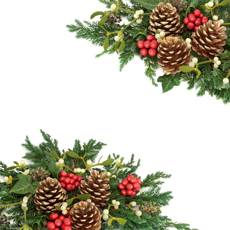 Christmas decorative border with gold pine cones, holly, ivy, mistletoe, cedar and juniper leaf sprigs on white background. Stock Photo - 87479313