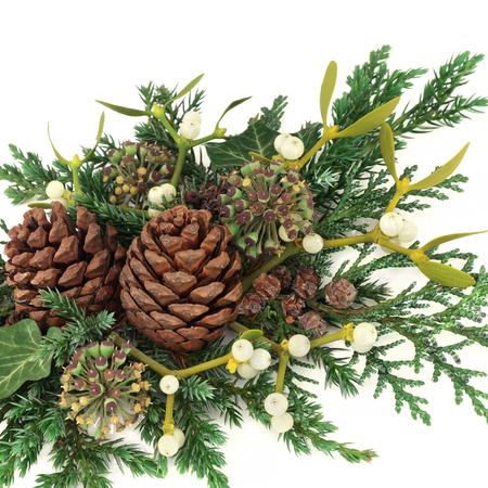 enebro: Decorative winter greenery with mistletoe, cedar cypress and juniper leaf sprigs, ivy and pine cones on white background. Foto de archivo