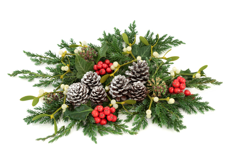 Christmas and winter table decoration with snow covered pine cones, holly, mistletoe, cedar cypress and juniper leaf sprigs and ivy on white background. Stock Photo - 88100101