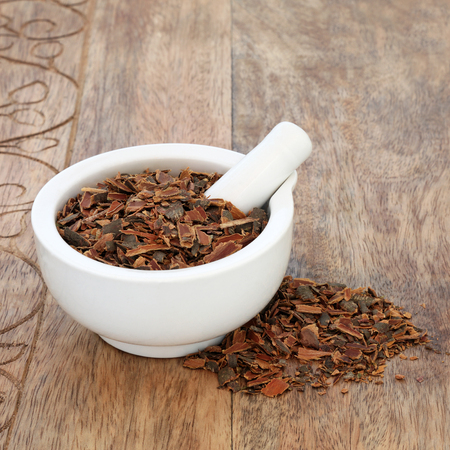 Buckthorn bark herb used in alternative herbal medicine to treat skin disorders, parasites, gallstones and has laxative properties in a mortar with pestle on rustic wood background. Rhamnus frangula.