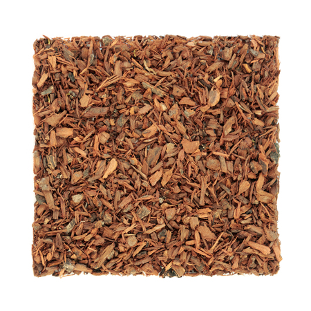 Pygeum bark herb used in alternative herbal medicine to stimulate sexual desire, to treat enlarged benign prostrate, can heal kidney disease, reduces inflammation. Pygeum africanum. Stock fotó