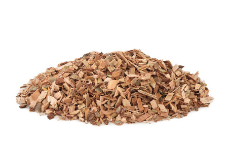 White willow bark herb used in alternative herbal medicine and has pain relieving and anti inflammatory properties and is similar to aspirin in its effects, on white background. Salix alba. Stockfoto