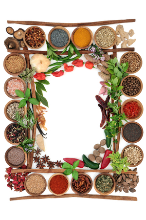 Abstract herb and spice border with fresh and dried herbs and spices with cinnamon sticks creating a frame  On white background, top view. Stockfoto