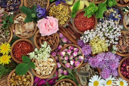 Herbs and flowers used in herbal medicine and chinese and natural homeopathic remedies background. Stock Photo