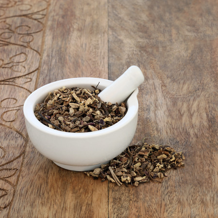 Echinacea root herb used in alternative herbal medicine to boost the immune system, protect against colds and has many other uses to improve health conditions. In a mortar with pestle on rustic wood b 스톡 콘텐츠