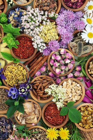 Medicinal herbs and flowers used in herbal medicine, homoeopathic and aromatherapy remedies forming a colourful background. Stock Photo