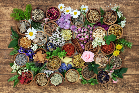 Herbal medicine with herb, spices and flowers used in chinese and natural alternative remedies with fresh herbs and flowers on rustic background. Top view. Foto de archivo