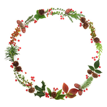 Natural winter and Christmas wreath garland with leaf sprigs, holly berries, pine cones, acorns and plants on white background. Traditional christmas greeting card for the festive season. Stock Photo