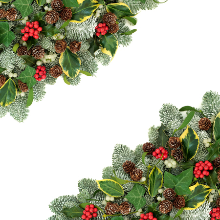 Christmas and winter natural background border with holly berries, snow covered spruce pine, ivy, pine cones and mistletoe on white with copy space.