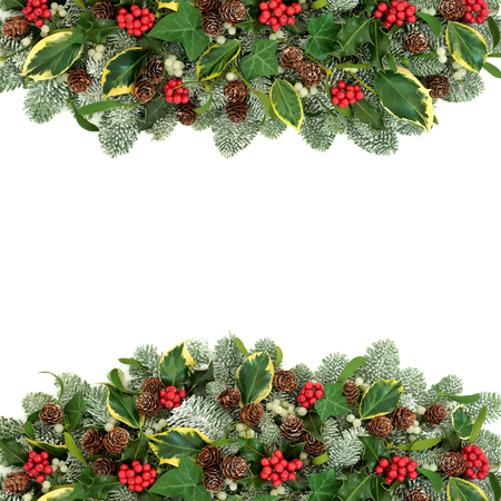 Traditional Christmas and winter natural background border with holly berries, snow covered spruce pine, ivy, pine cones and mistletoe on white with copy space.