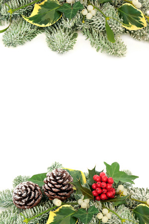 Christmas and winter  background border with holly berries, snow covered spruce pine, mistletoe, ivy and pine cones, isolated on white background.