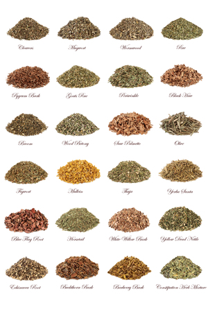 Herbs used in natural herbal medicine 写真素材