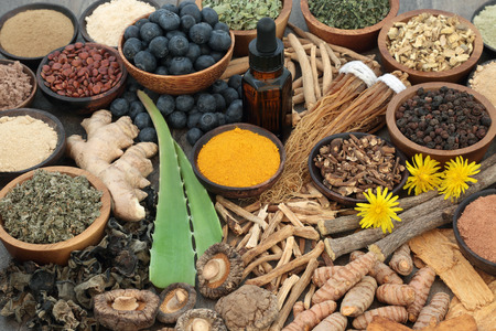 Adaptogenic food collection with herbs, spices, fruit, essential oil and supplement powders. Used in herbal medicine to help the body resist the damaging effect of stress and restore normal physiological functioning.