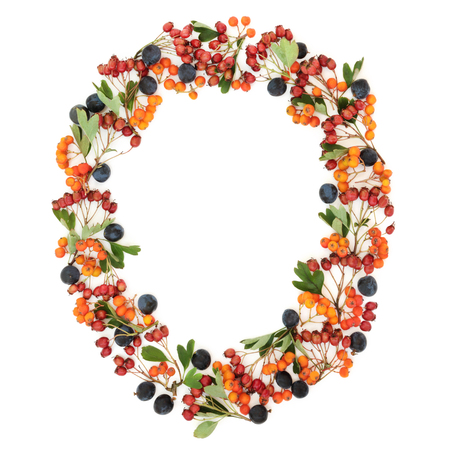 Autumn berry oval wreath with blackthorn, hawthorn and rowan berries on white background with copy space.