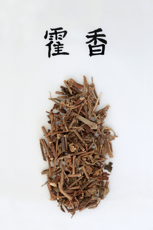 Korean mint herb used in traditional chinese herbal medicine with calligraphy script. Translation reads as Korean mint. Used to help diabetes, anemia, osteoporoisis & allergies. Di huang.