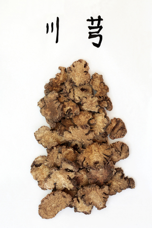 Szechwan lovage root herb used in traditional chinese herbal medicine with calligraphy script. Translation reads as szechwan lovage. Used as an anti inflammatory, anti bacterial  & has many other health benefits. Chuan xiong.