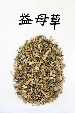 Motherwort herb used in chinese herbal medicine with calligraphy script, promotes circulation, regulates menses, promotes urination, relieves swelling & edema. Translation reads as chinese motherwort.