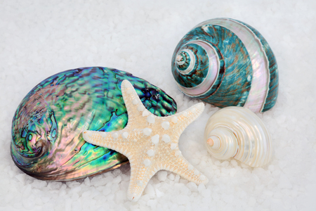 Mother of pearl seashells with starfish on course sea salt background.