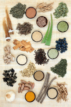 Adaptogen food selection with herbs, spices, fruit and supplement powders. Used in herbal medicine to help the body resist the damaging effect of stress and restore normal physiological functioning. Standard-Bild