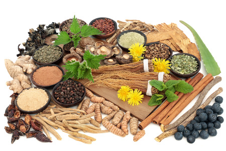 Adaptogen food selection with herbs, spices and supplement powders. Used in herbal medicine to help the body resist the damaging effect of stress and restore normal physiological functioning.