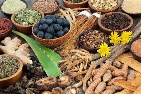 Adaptogen food collection with herbs Standard-Bild