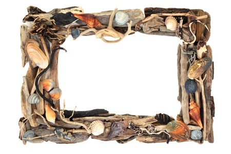 Rustic driftwood and seashell frame forming a background border on white with copy space. Stock fotó