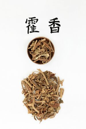 Korean mint herb used in chinese herbal medicine with calligraphy script. Improves the appetite and strengthens the digestive system and is also anti bacterial and anti fungal. Translation reads as korean mint. Huo Xiang.