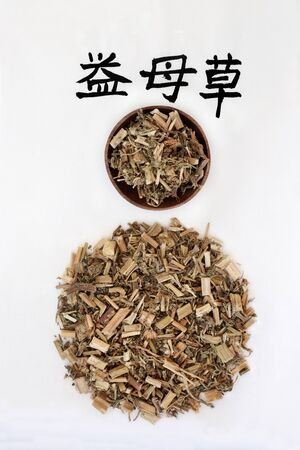 Motherwort herb used in chinese herbal medicine with calligraphy script, promotes blood circulation, regulates menses, promotes urination, relieves swelling & edema. Translation reads as chinese motherwort. Yi mu cao. Leonurus.