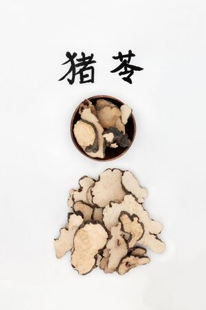 Mushroom polyporus sclerotium herb used in chinese herbal medicine, has diuretic, antibiotic properties and boosts the immune system. On rice paper with calligraphy script, translation reads as mushroom polyporus sclerotium. Zhu ling. Stock Photo