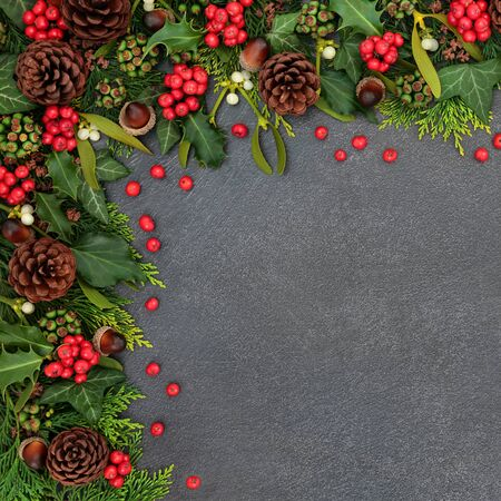 Natural winter and Christmas background border with holly and loose berries, mistletoe, ivy, cedar leaves and pine cones on grunge grey background with copy space. Фото со стока