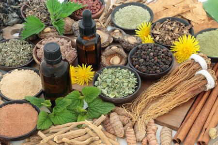 Adaptogen food collection with herbs, spices, essential oil and supplement powders. Used in herbal medicine to help the body resist the damaging effect of stress and restore normal physiological functioning.