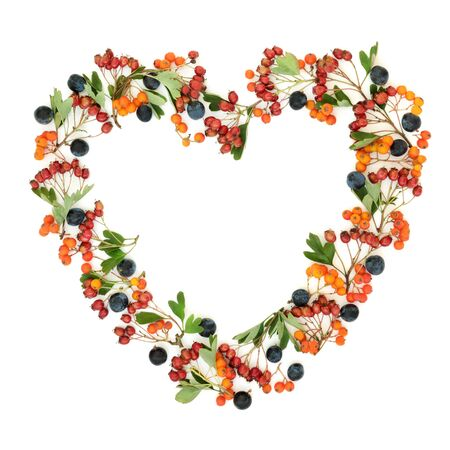 Autumn berry heart shaped wreath with blackthorn, hawthorn and rowan ash berries on white background with copy space.
