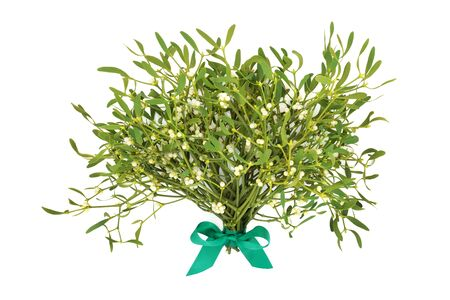 Winter and Christmas mistletoe tied with a green bow on white