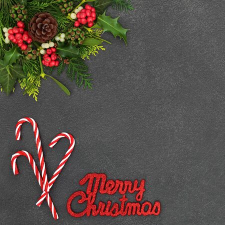 Merry Christmas background border with candy canes and glitter sign with winter flora of holly, mistletoe, ivy and cedar leaves on grunge grey background with copy space.