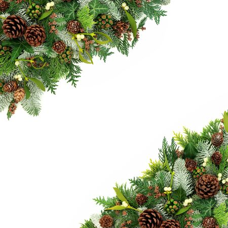 Winter and Christmas  border with flora of snow covered spruce fir