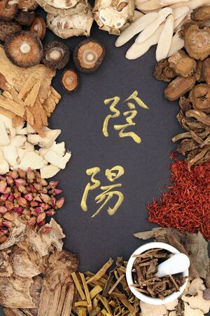 Yin and yang Chinese herbs used in traditional herbal medicine with mortar and pestle and calligraphy script.