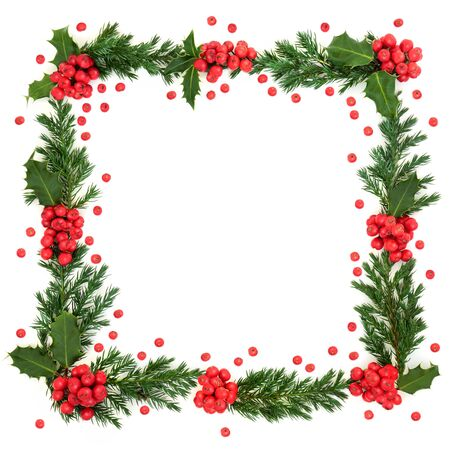 Christmas and winter square border with holly and juniper leaf sprigs and loose berries on white background with copy space. Stock Photo