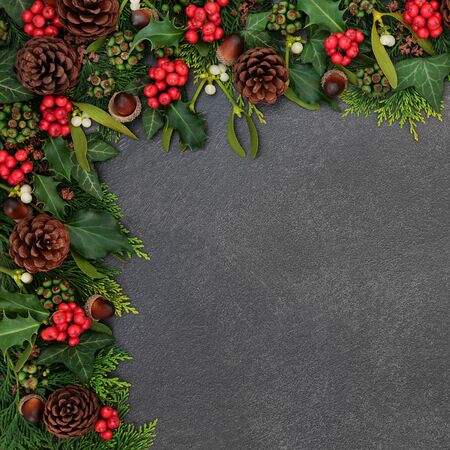 Winter and Christmas background border with holly, mistletoe, ivy, cedar leaves, acorns and pine cones on grunge grey background with copy space. 스톡 콘텐츠