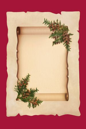 Old scroll on parchment paper with cedar cypress leaf sprigs on red background. For a traditional winter or Christmas theme. 写真素材