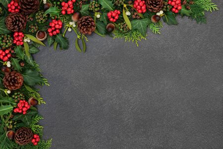 Natural winter and Christmas background border with holly, mistletoe, ivy , cedar leaves, acorns and pine cones on grunge grey background with copy space.