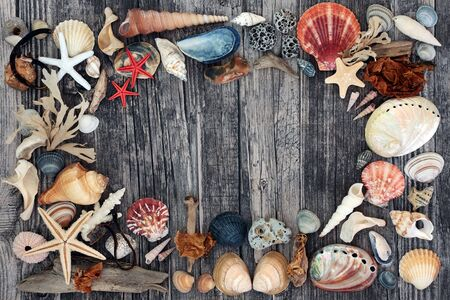 Seashell, driftwood, pebble & seaweed abstract background on weathered wood. Flat lay, top view.